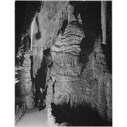 Carlsbad Caverns National Park New Mexico 2