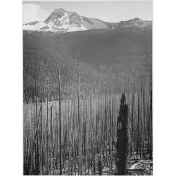Glacier National Park Burned Area