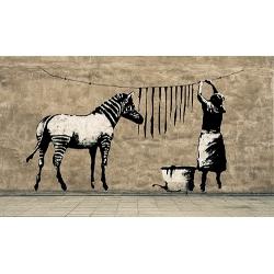 Washing Zebra Stripes