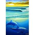 Dawn Dolphins