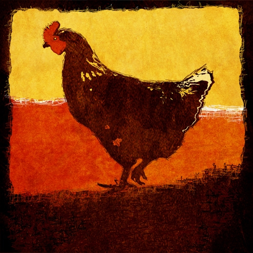 Chicken - workART Prints and Picture Frames