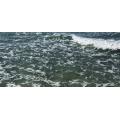 Indian Ocean Water Waves