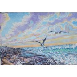 Slangkop with Seagulls