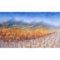 Vines at Constantia
