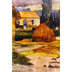 Landscape Arles