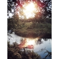Sabie River Reflection 2