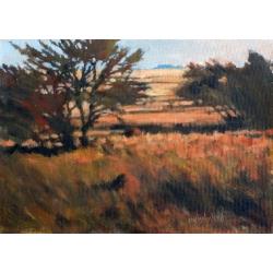 Bush in the Autumn