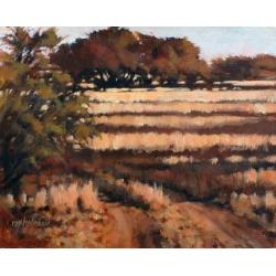 Bush in the Autumn 2