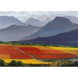 Colourful Farm Land