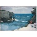 Rocky Shore Bermuda