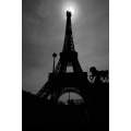 Eiffel Tower Backlit Bronze Horse