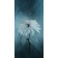 Cherene Flower 5