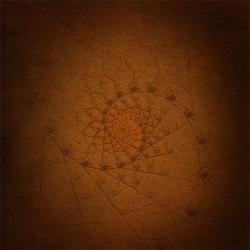 Textured Spiral1