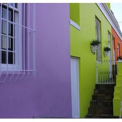 Purple Green House 451