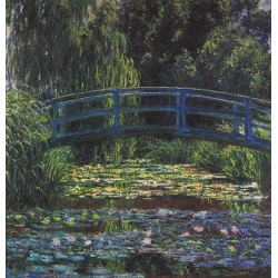 Water Lily Pond 1