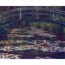 Water Lily Pond 4