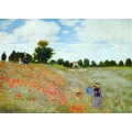 Wild Poppies near Argenteuil (1873)