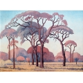Lowveld Landscape with Acacia Trees