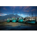 Hout Bay Boats