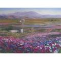 Namaqualand Floral Show