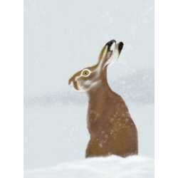 The Hare and the Snow