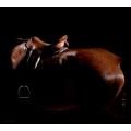 Shadow Horse Bay Saddle