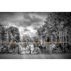 Amsterdam Herengracht and Sunrays