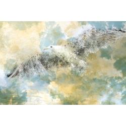 Vanishing Seagull