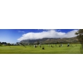 Steenberg Panoramic 1