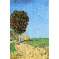 A Lane Near Arles