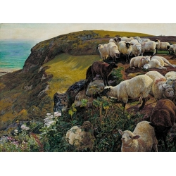 Our English Coasts, 1852 ('Strayed Sheep')
