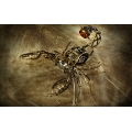 Mechanical Scorpion